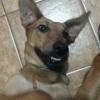 /~shared/avatars/17243588266382/avatar_1.img