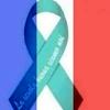 /~shared/avatars/2224115111441/avatar_1.img