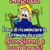 /~shared/avatars/30362859015005/avatar_1.img