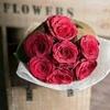 /~shared/avatars/31034745467010/avatar_1.img