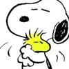 /~shared/avatars/32797749888041/avatar_1.img