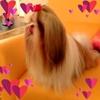/~shared/avatars/39740582763864/avatar_1.img
