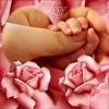 /~shared/avatars/50279475105514/avatar_1.img