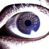 /~shared/avatars/68553872327146/avatar_1.img