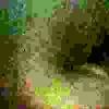 /~shared/avatars/8914685513630/avatar_1.img