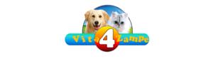 Vita 4 zampe